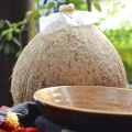 Cách làm rượu dừa tươi thơm ngon tại nhà